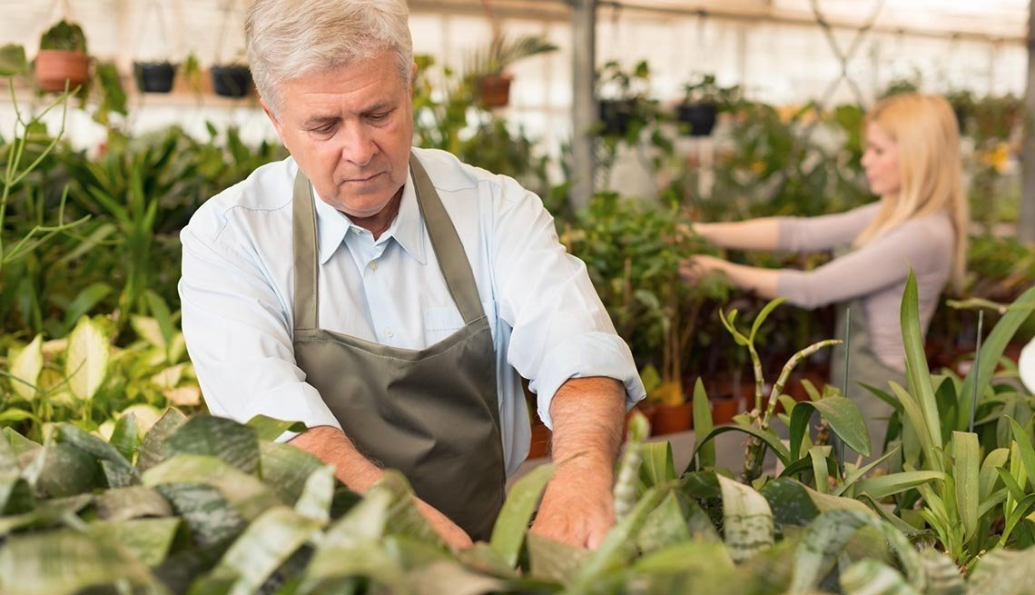 Mature adults working in a plant nursery, 7 Facts About Our Aging Economy