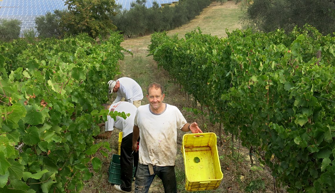 Dwight Stanford works in his vineyard in Offida, Italy after he retired.  Today, the 59-year-old co-owns and operates a B&B in a 500-year-old farmhouse and the Paolini & Stanford Winery.