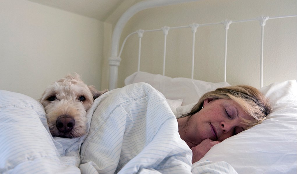 A woman lies in bed with her dog.