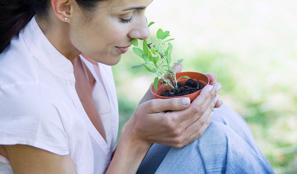 Woman sitting outdoors, smelling pot of herbs