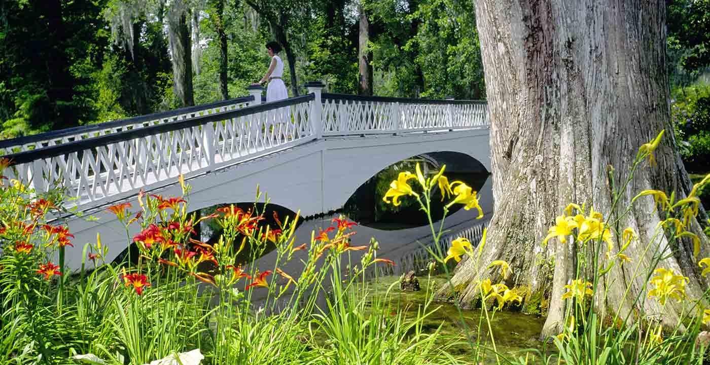 Botanical gardens to visit aarp for Magnolia gardens charleston sc