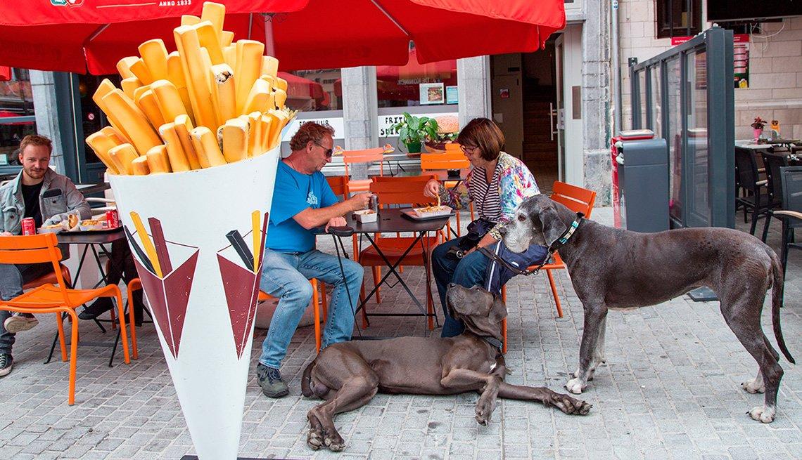 Pareja comiendo papas fritas acompañados de dos perros gran danés