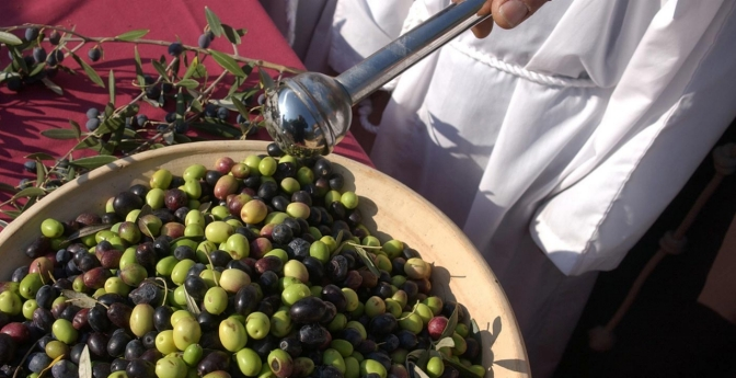 Sonoma Valley Olive Festival