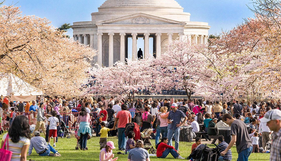 Personas caminan en medio de los árboles en Washington, DC