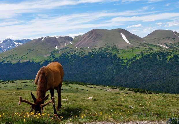 Estes Park, Colorado - 10 viajes económicos de primavera