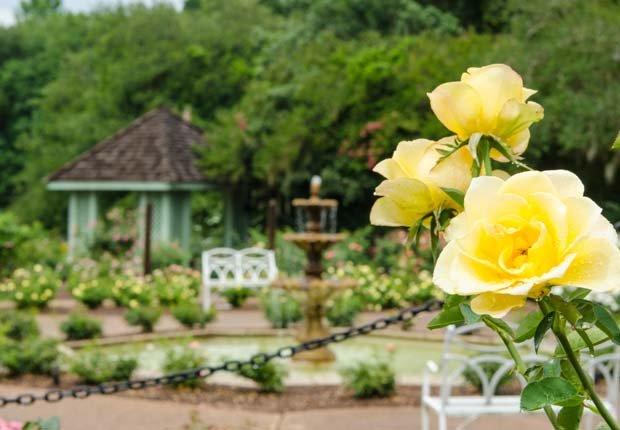 Harry P. Leu Gardens Orlando, Florida - 10 viajes económicos de primavera