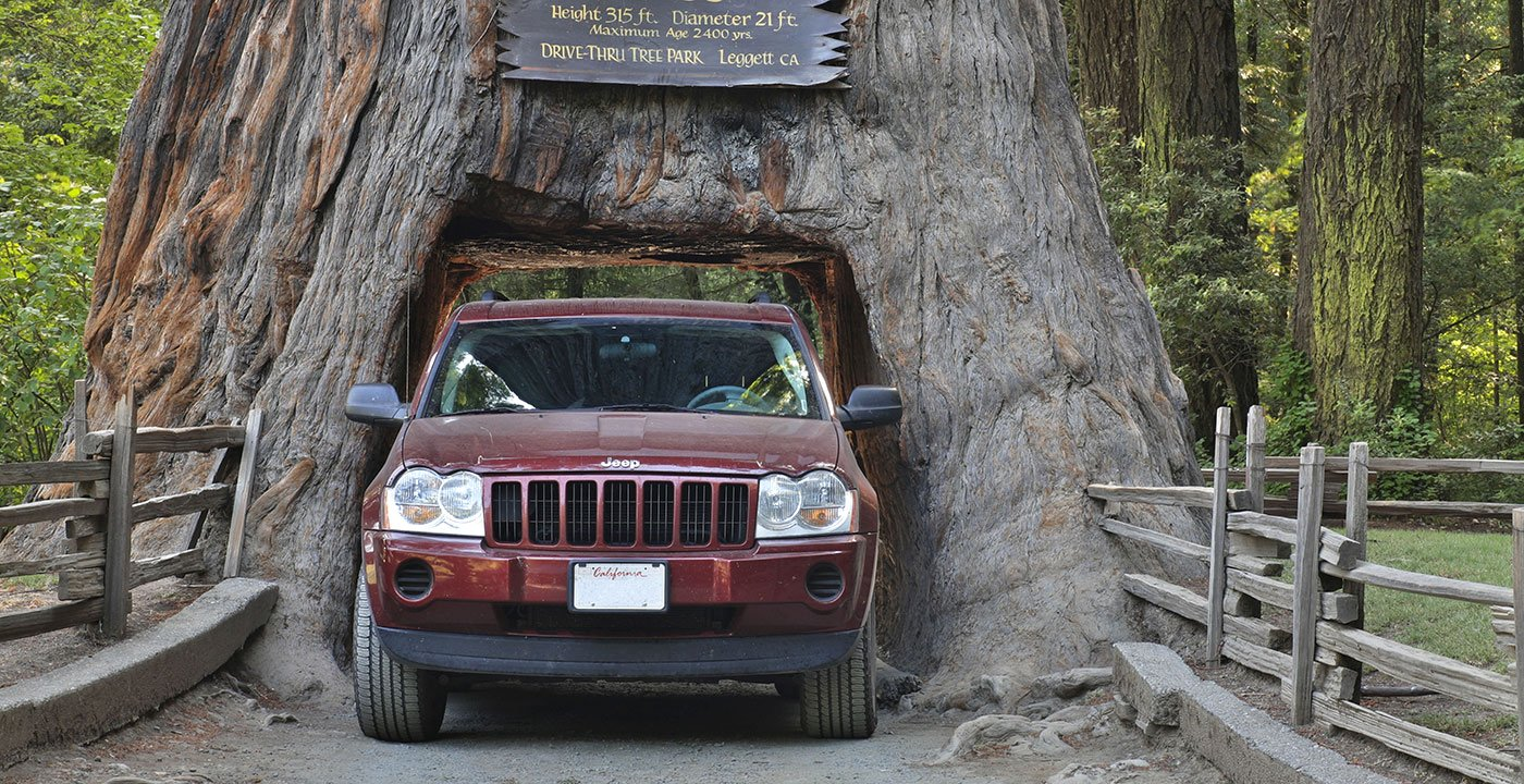 An SUV drives through a cut-out giant sequoia tree in the Chandelier Drive-Thru Park in California.