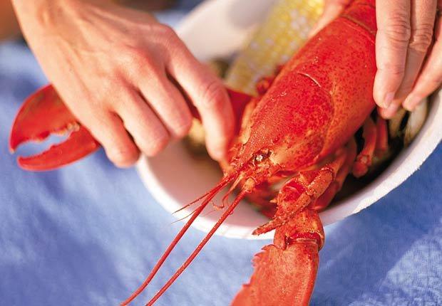 Festival de la Langosta de Maine, 10 mejores festivales gastronómicos de verano EE.UU. para 2014