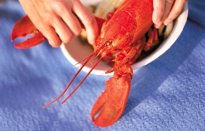 Maine Lobster Festival, 10 Best U.S. Summer Food Festivals for 2014