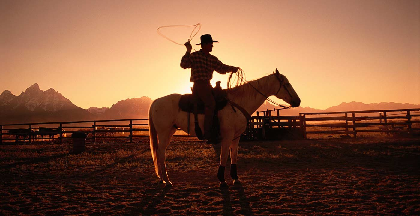 Find Your Inner Cowboy