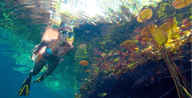 Sandos Caracol Eco Resort (Near Playa del Carmen)