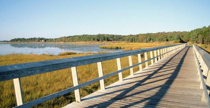 Cape Cod Rail Trail is one of many bike trails across the United States.