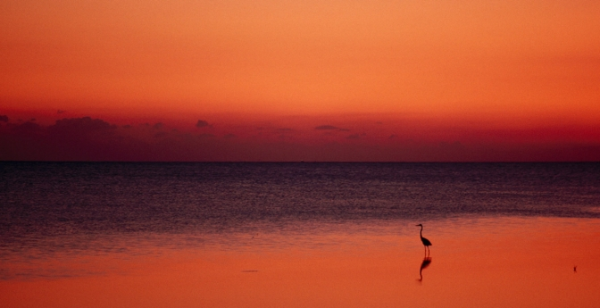 Most Secret Sunset: Key West, Florida