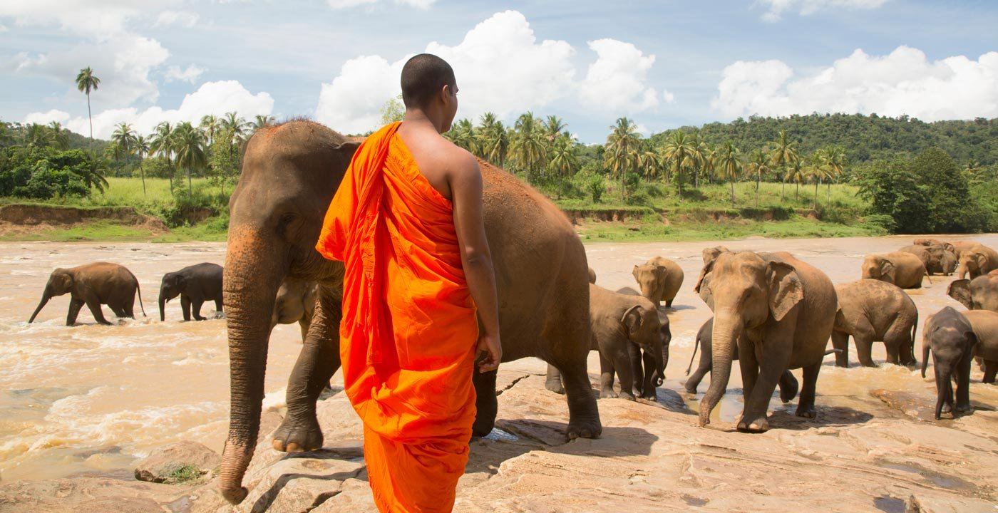Sri Lanka: This teardrop-shaped island off India's south coast is compact and easy to explore.