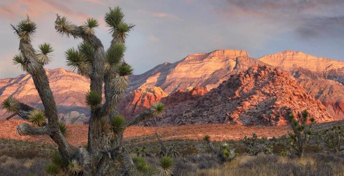 Places to visit near Las Vegas