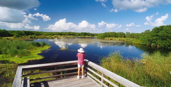 Everglades City, Fla.