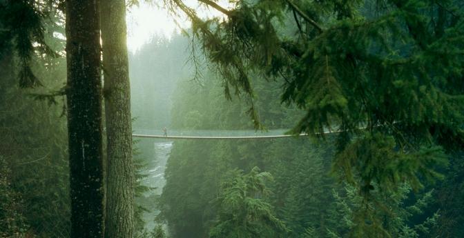 Capilano Suspension Bridge, Vancouver, British Columbia