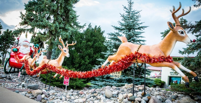 Reindeer outdoor decor