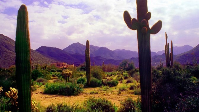 Scottsdale, Ariz.