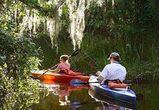 Everglades en Florida - Destinos asequibles para el invierno