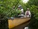 Cómo hacerse voluntario en los parques nacionales