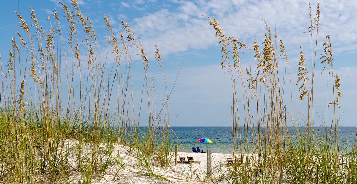 Gulf Shores Sand Dunes