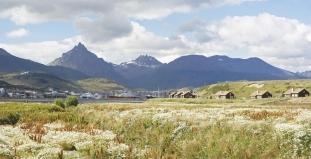 Fields of Tierra del Fuego