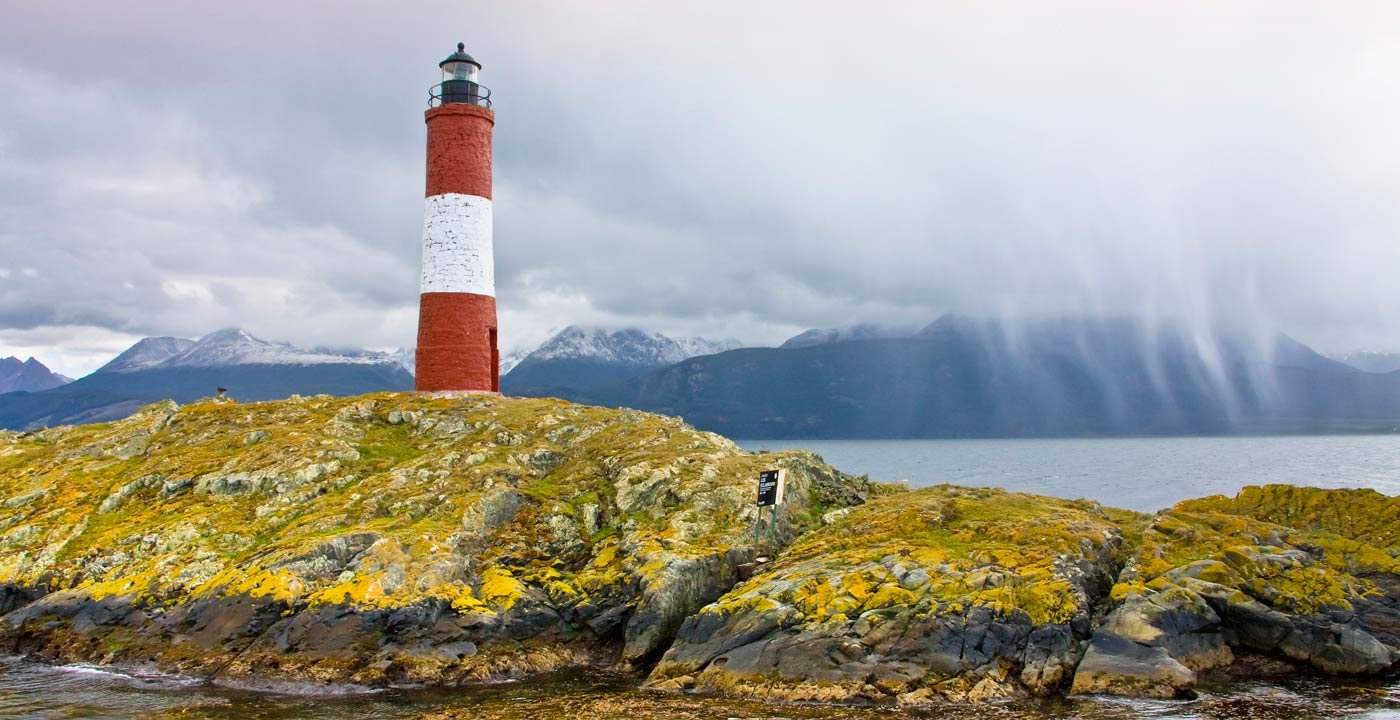 Wildlife Spectacle on Beagle Channel Islands