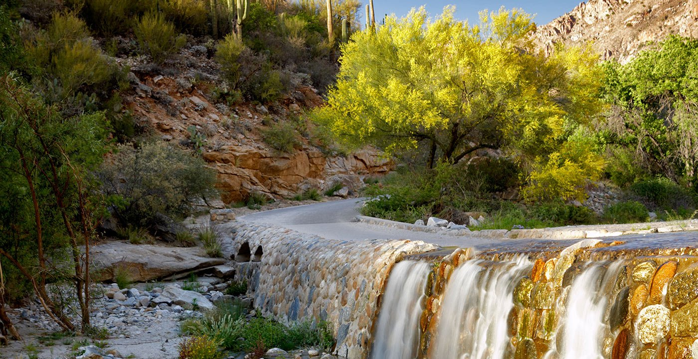 Sabino Canyon Is a Favorite Scenic Getaway