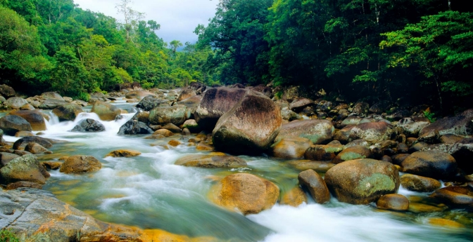 Scenic Beauty and Local Culture at Mossman Gorge