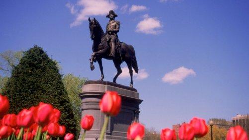 Take it Easy at Boston Common