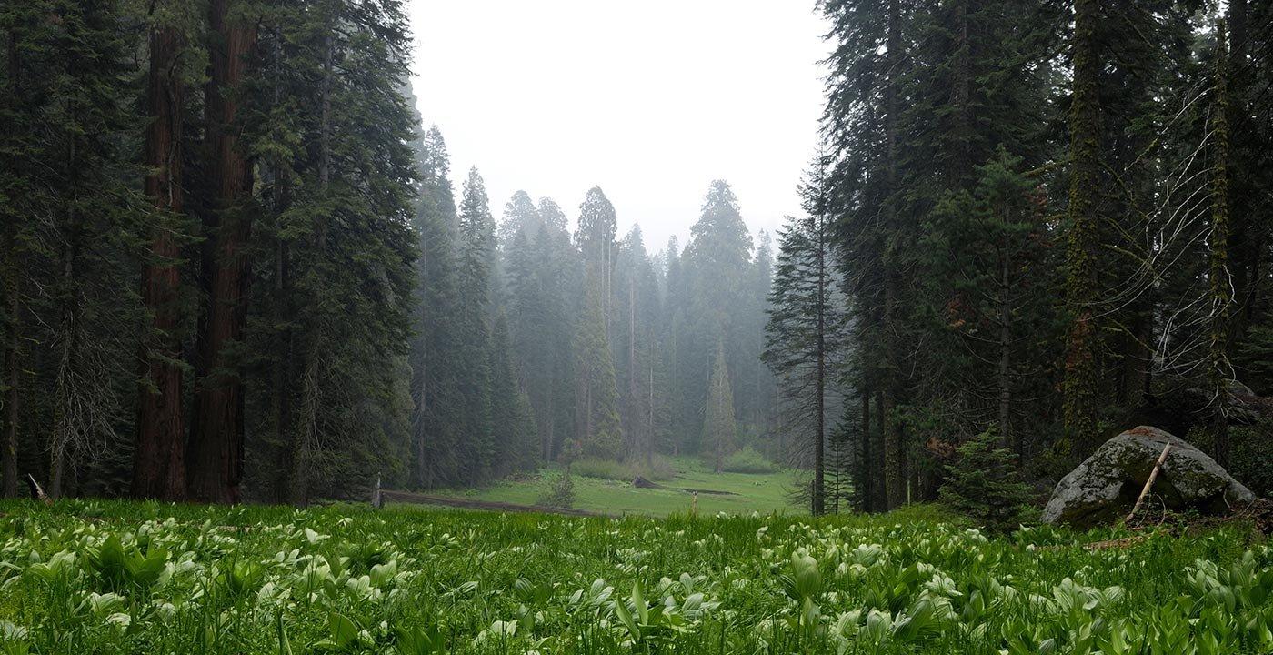John Muir Called It 'Gem of the Sierra'