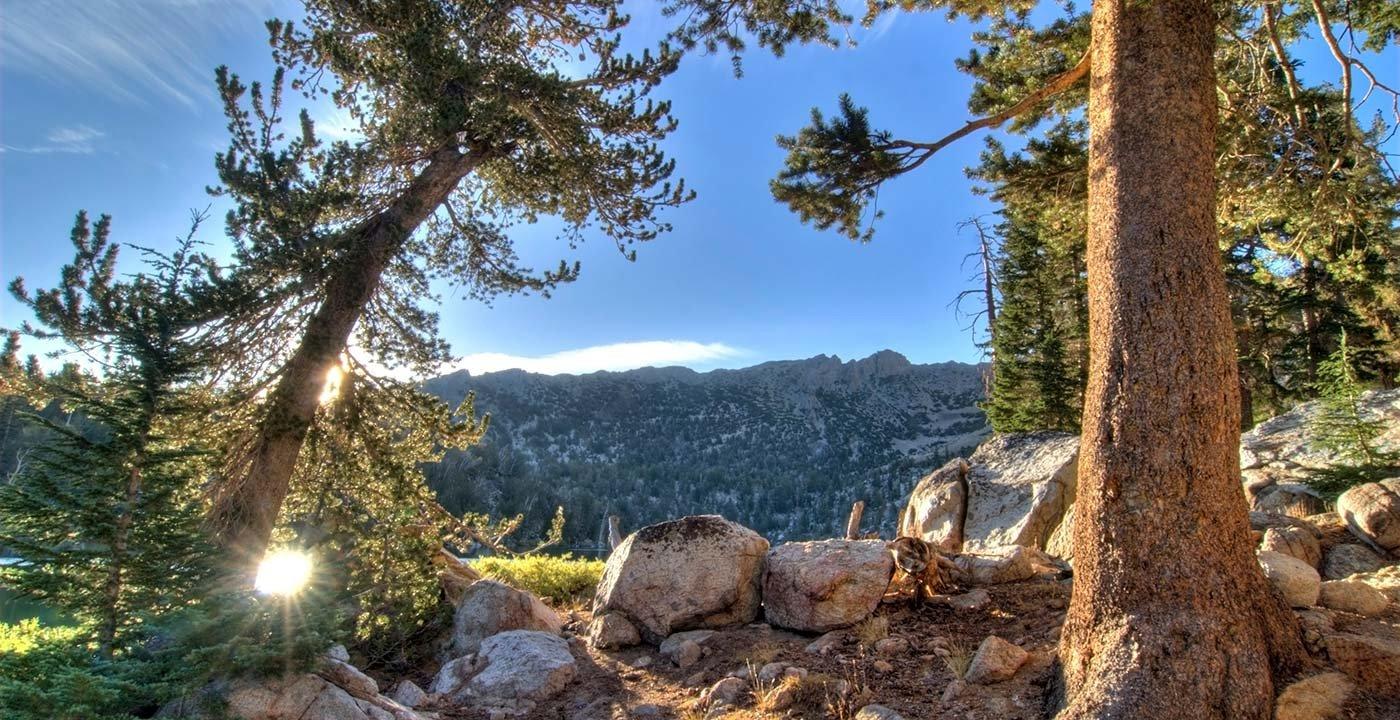 Hit the Tahoe Rim Trail