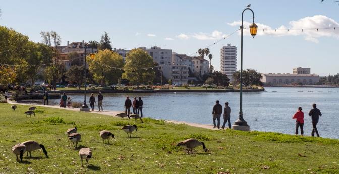 A Downtown Lake