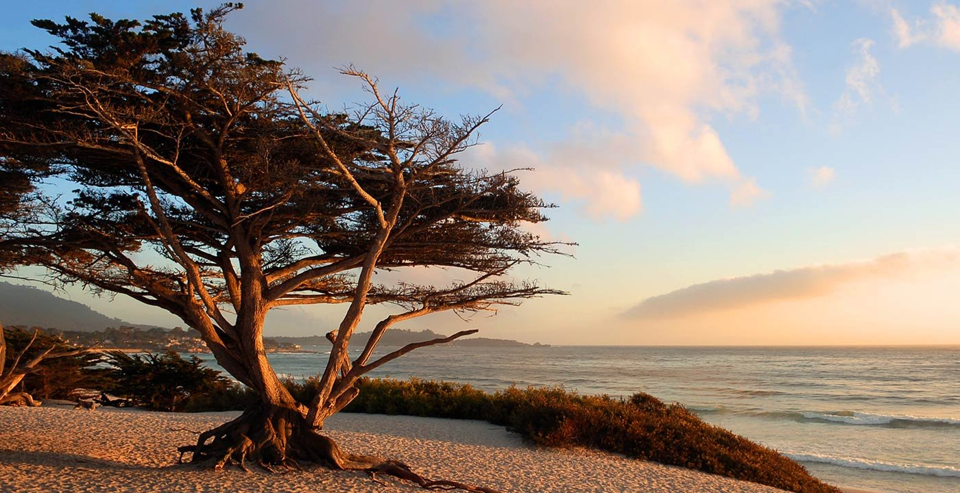 Family Weekend Getaway in Monterey and Carmel