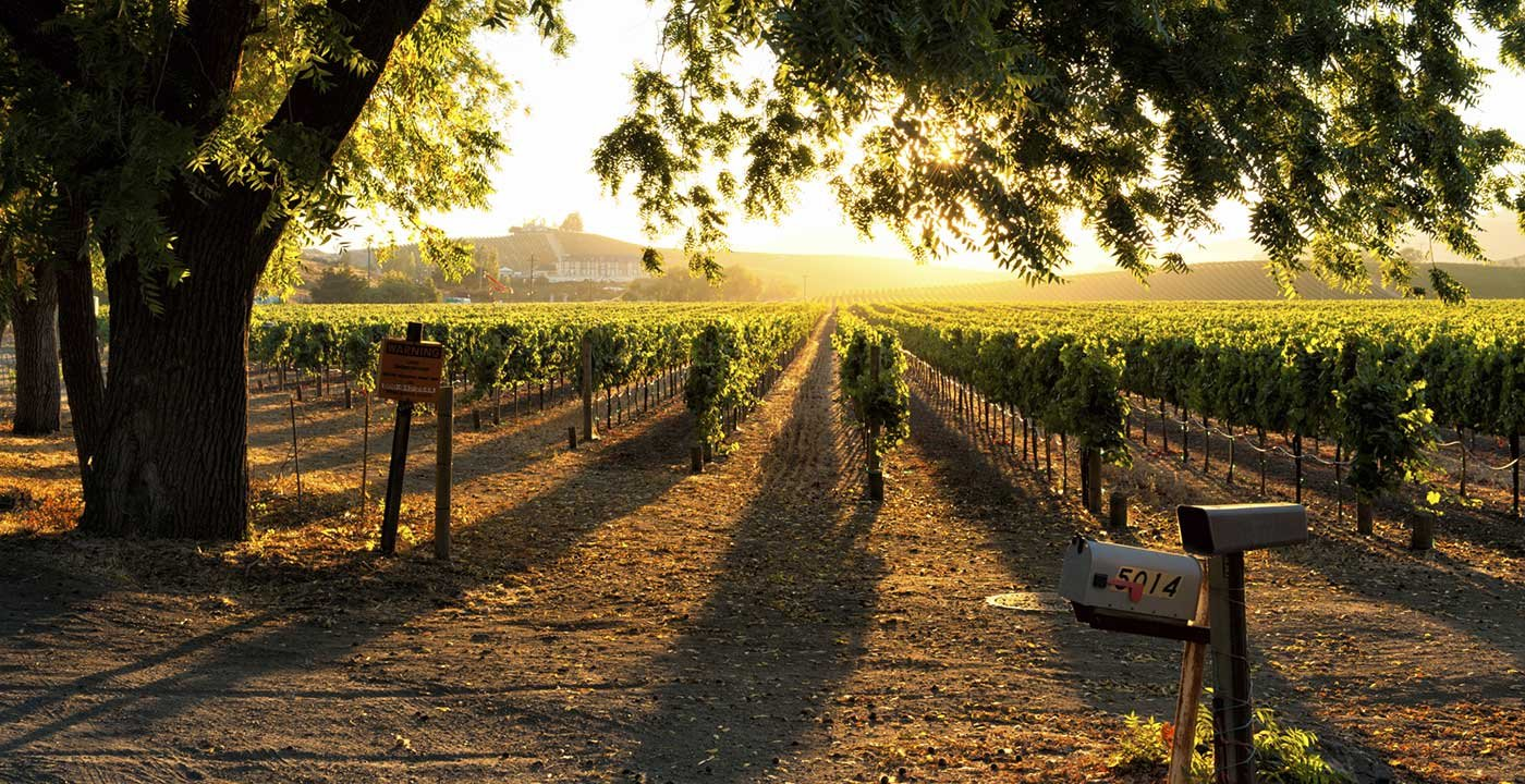 Image Gallery Sonoma Valley