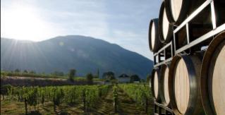 Okanagan Wine Country