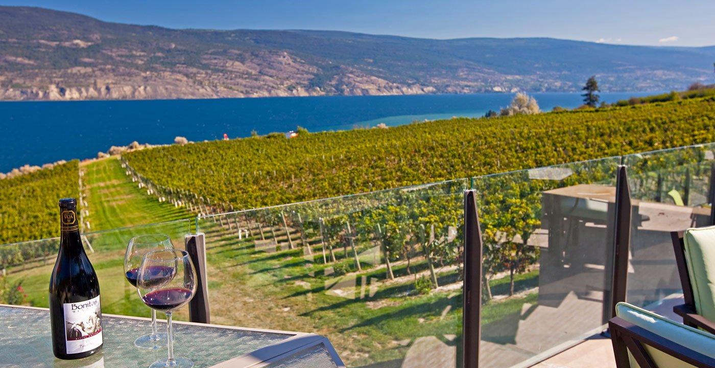 The Region's Award-Winning Wines