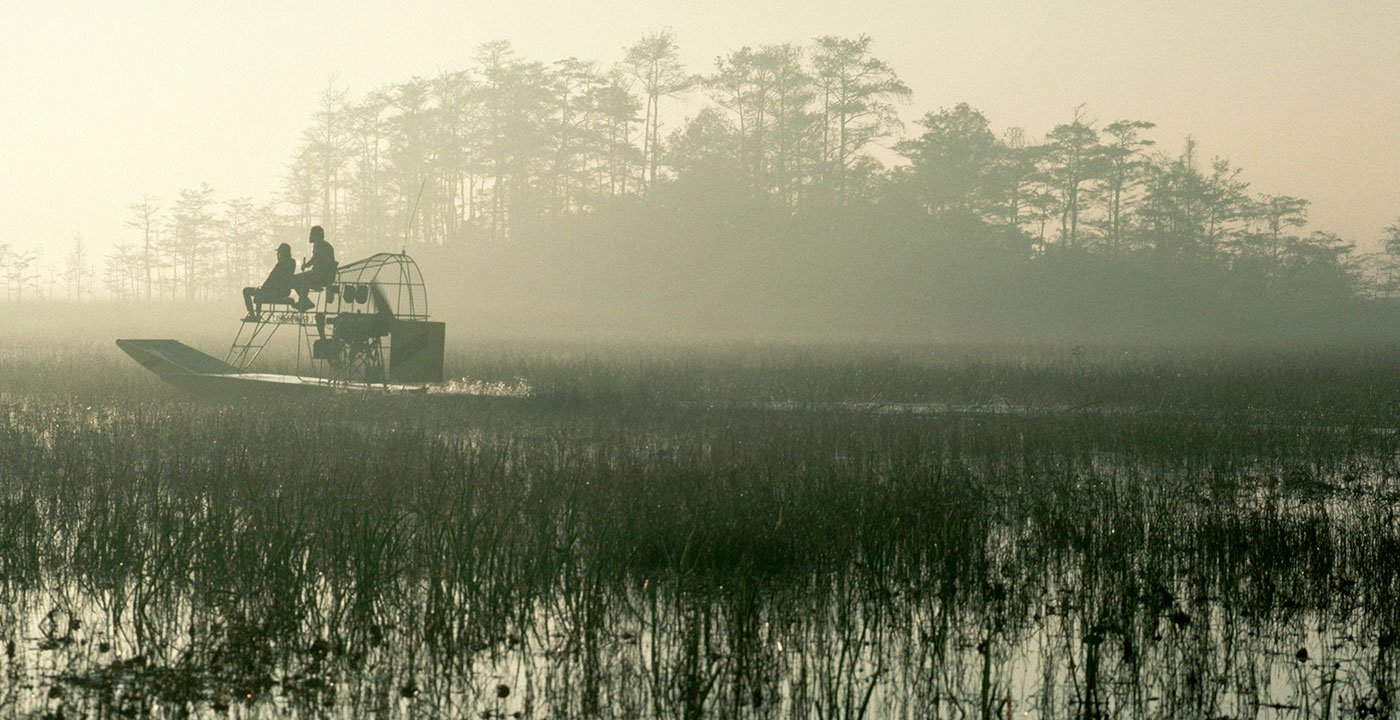 Take in Miles of Wetlands With a Gator Park Airboat Tour