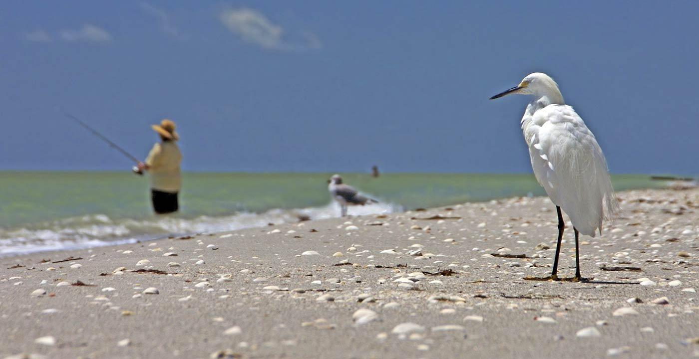 photo of Outdoor Weekend Getaway in Sanibel and Fort Myers