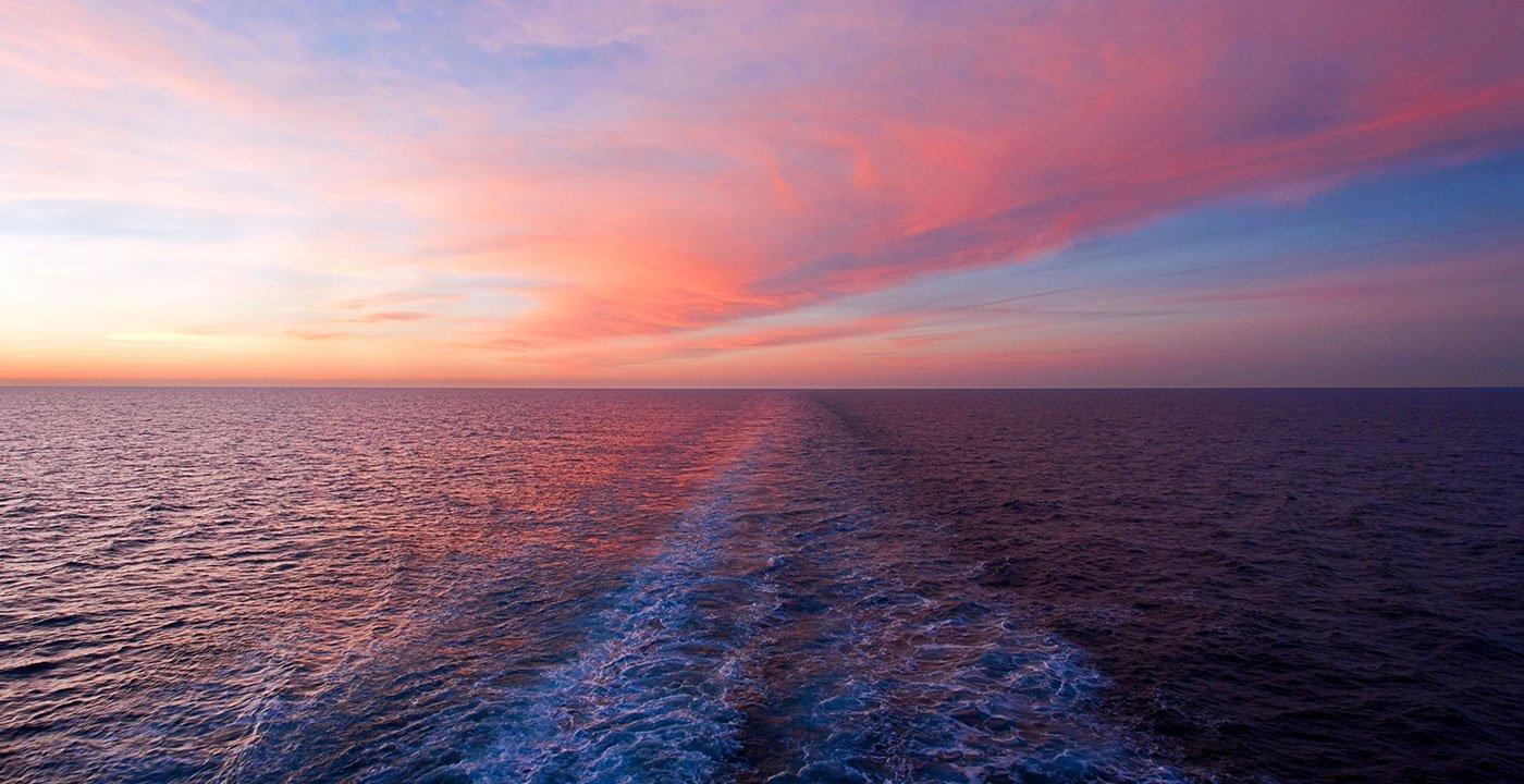 Explore the Gulf With Captiva Cruises