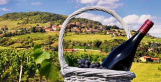 Beaujolais Route du Vin, France