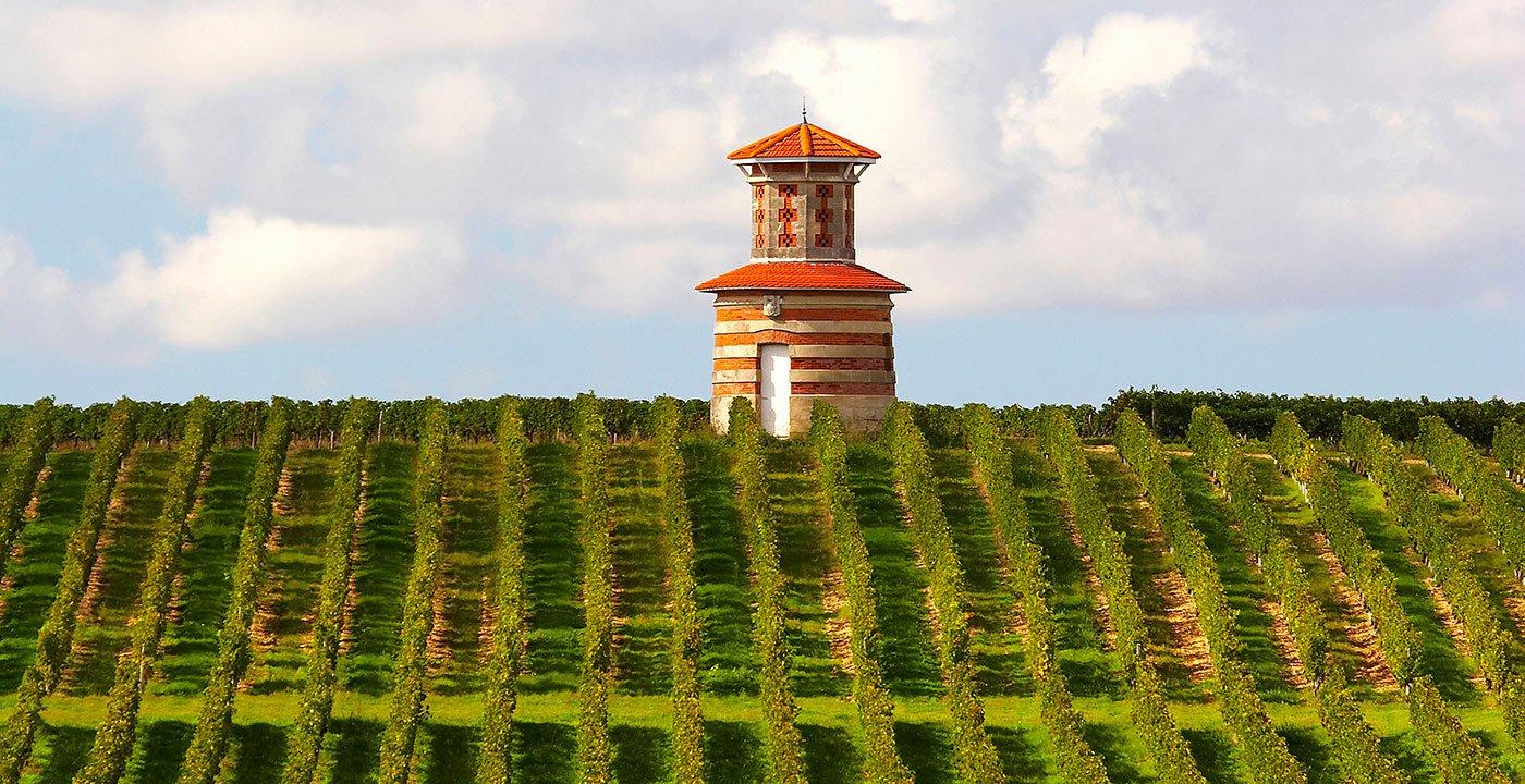 Sample the Summer Wine Festival