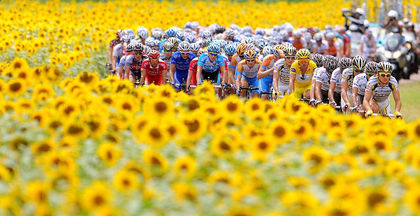 Catch the Excitement of the Tour de France