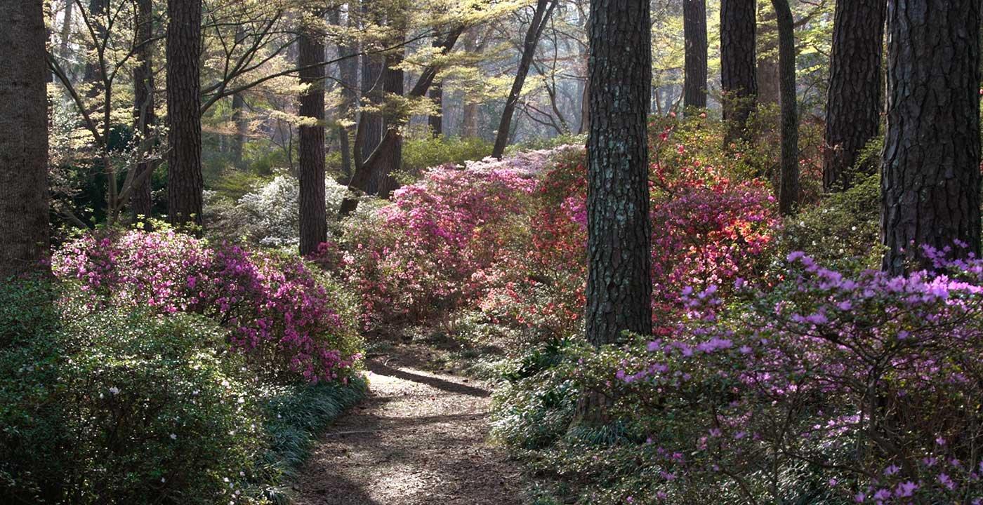 Photo Top Georgia Golf Resort Callaway Gardens Images