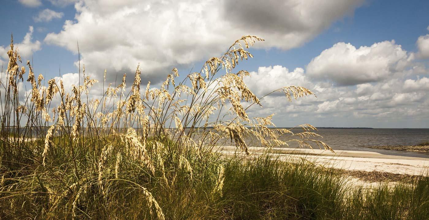Jekyll Island Beach