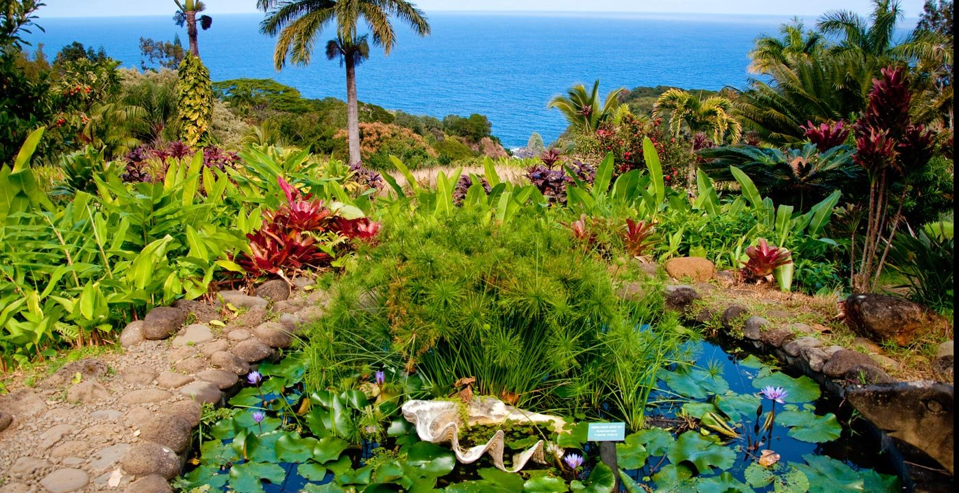 A Wonderland of Greenery on Onomea Bay