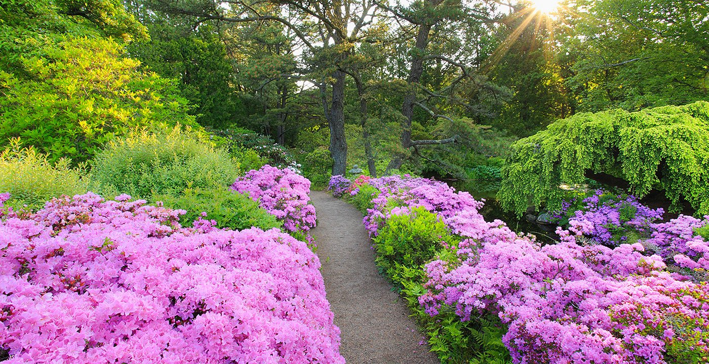Have a Zen Moment in a Secret Garden