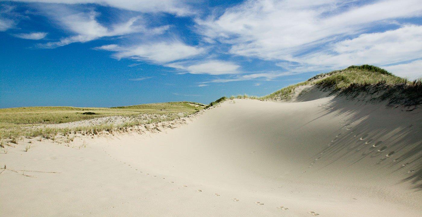 Do the Dunes