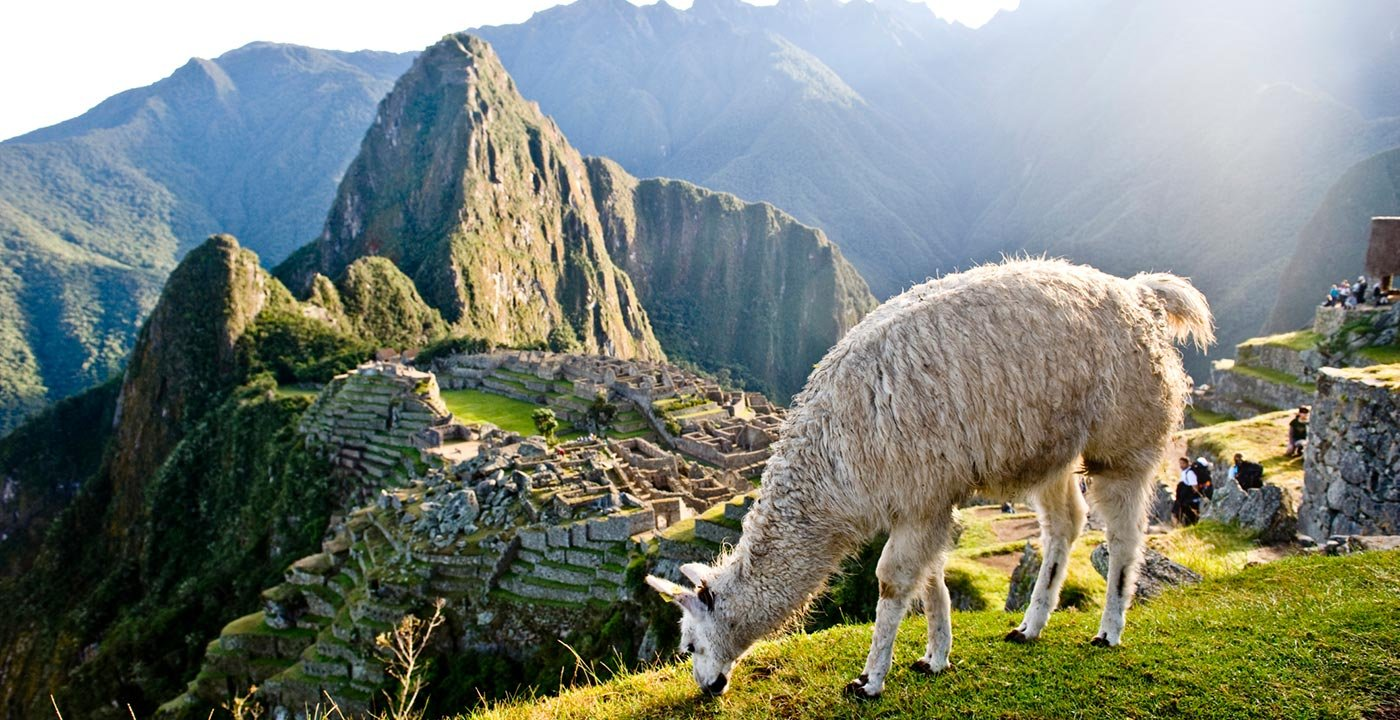 Machu Picchu And The Inca Trail Vacation Travel Guide And